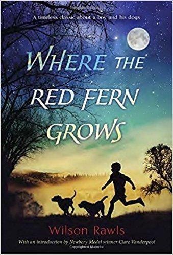 Red Fern 1