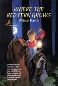 Red Fern 3