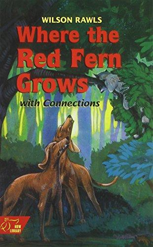 Red Fern 5