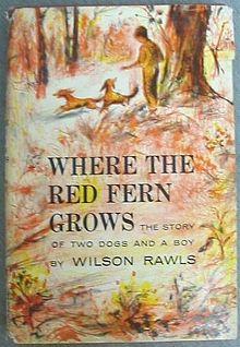 Red Fern 6