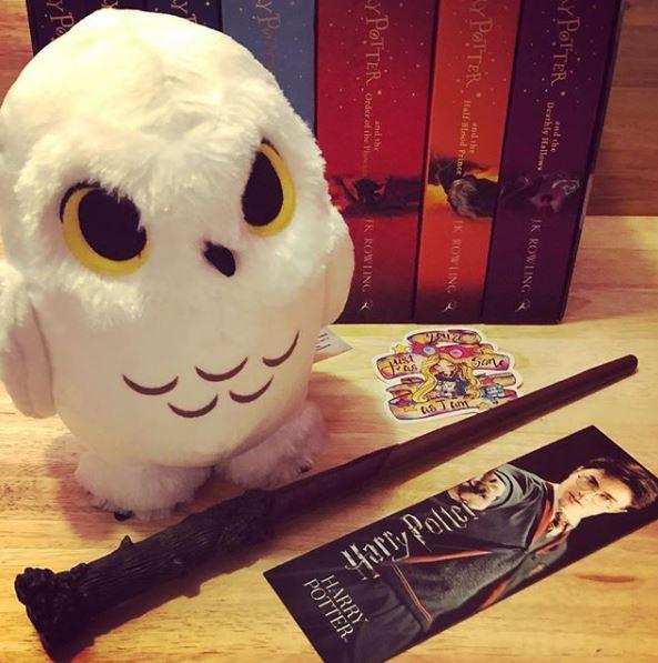 Harry Potter2