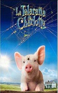 Charlotte24